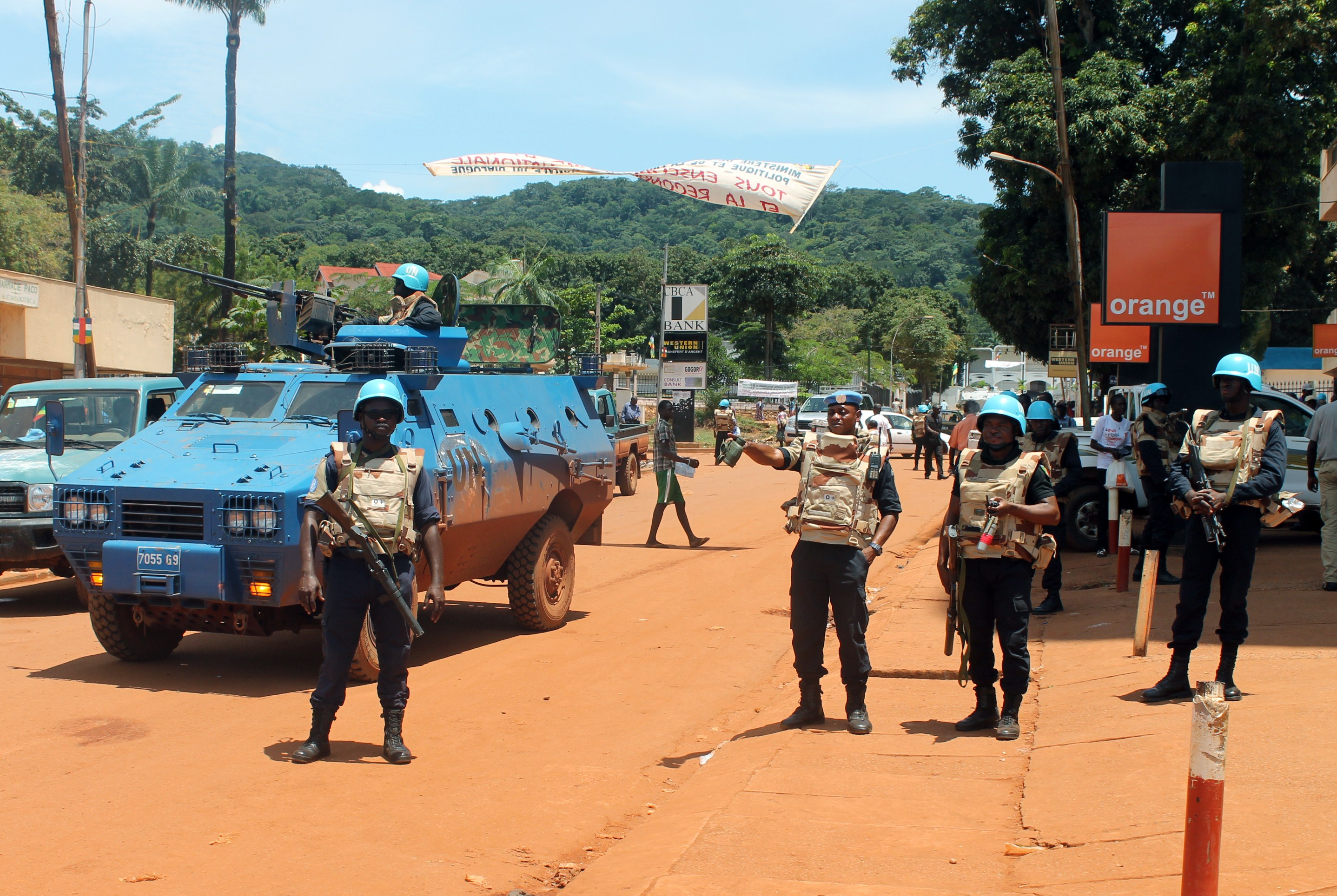 Image for Central African Republic: A weak country with a long border
