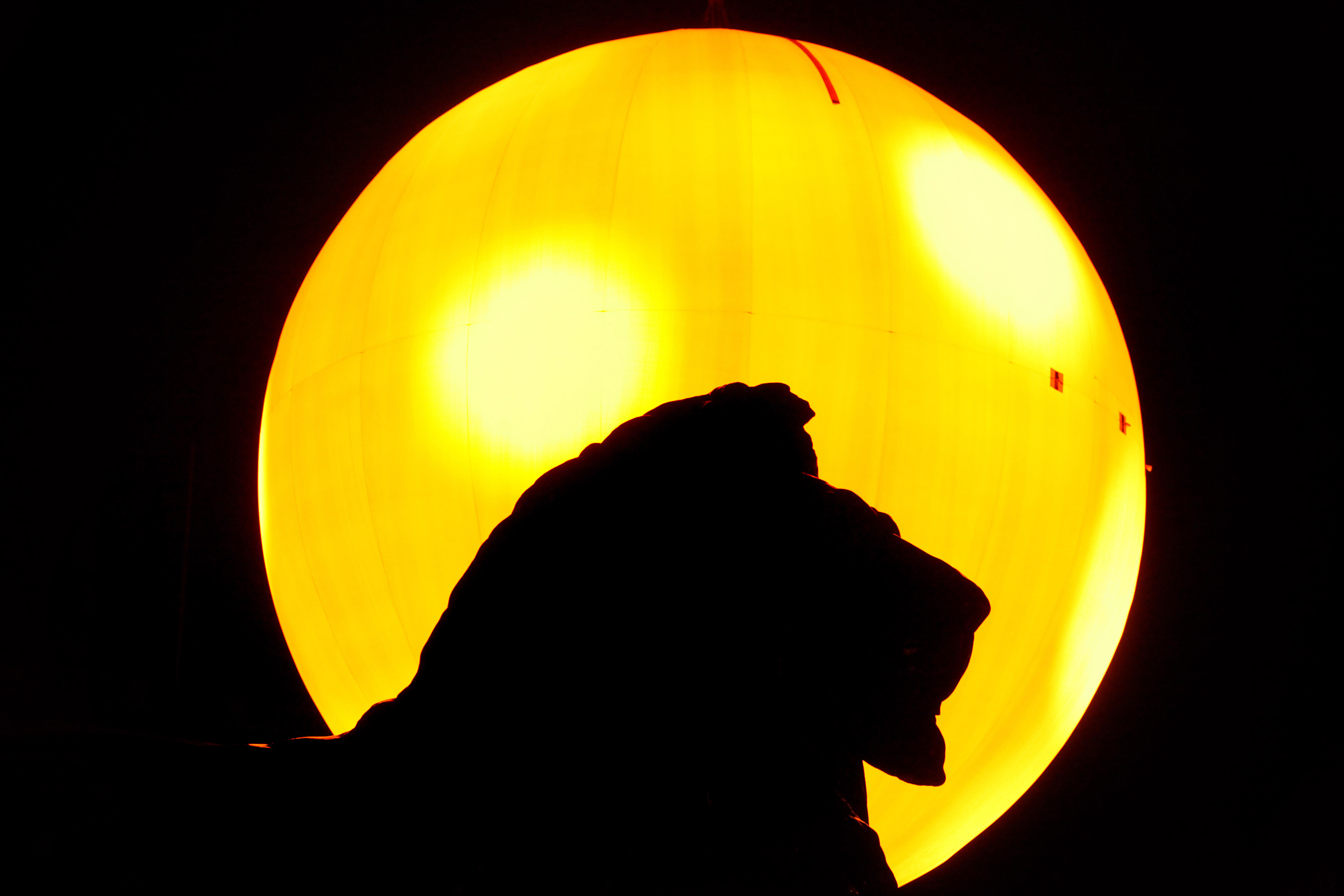 Image for Медленное пробуждение британского льва
