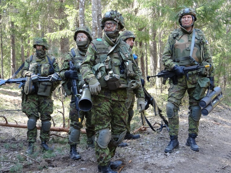 Image for Volunteers Defend the Baltic States