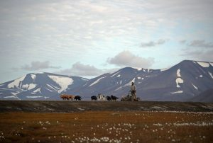 Image for Svalbard – Worth Keeping an Eye On